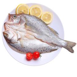 速鲜 活冻三去国产白蕉海鲈鱼 350-400g/条 *3件