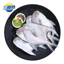 SAN DU GANG 三都港 东海小银鲳平鱼 550g  *4件