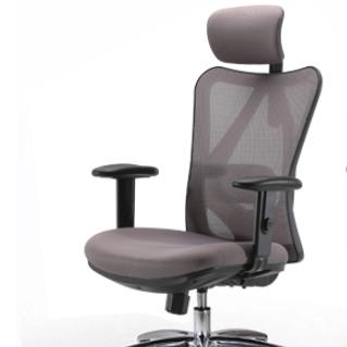 SIHOO 西昊 M18 人体工学电脑椅