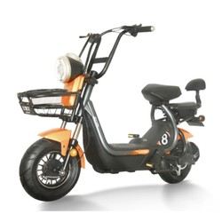 比德文 TDT1819Z 电动自行车