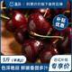 盒马智利车厘子净重2.5kg单果JJ新鲜甜樱桃当季水果 119.9元