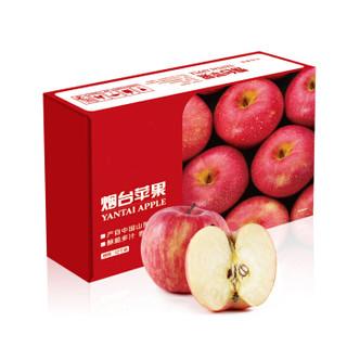 烟台红富士苹果12个 净重2.6kg以上 单果190-240g 年货礼盒 新鲜 生鲜水果 *3件