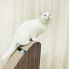 PAKEWAY 派可为 猫头立式猫抓板 35*24*55cm
