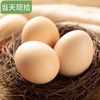 桃小淘 农家生态正宗土鸡蛋 40枚装