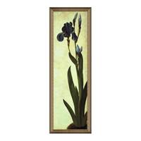 现代简约 丢勒名人油画《鸢尾花》装饰画 典雅栗 39×110cm