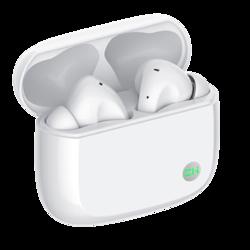 ZMI 紫米 TW100 入耳式真无线降噪蓝牙耳机 白色 *2件