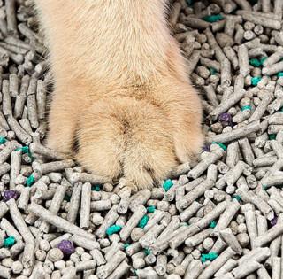 PETKIT 小佩 混合猫砂 3.6kg 活性炭