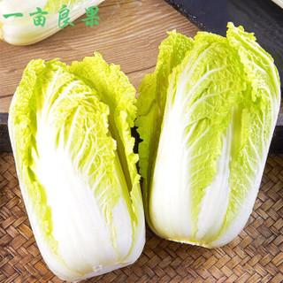 (一亩良果)农家自种小娃娃菜新鲜蔬菜黄娃娃菜大白菜应当季时令 精品娃娃菜 普通装