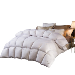 LOVO 乐蜗家纺 乐蜗 羽绒被子冬天90白鹅绒被芯冬季双人冬被加厚保暖  多维空间鹅绒被 220x240cm