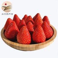 东方态美 红颜草莓 净重2.8斤