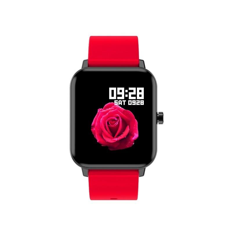 ZTE 中兴 Watch ES43C 智能手环 新年款