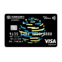 CMBC 民生银行 芯动系列 信用卡白金卡 Visa版