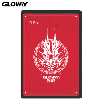 GLOWAY 光威 Gloway 光威 弈系列 Pro SATA3.0 SSD 固态硬盘 256GB