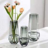 喜韶 北欧简约创意玻璃花瓶(小号)