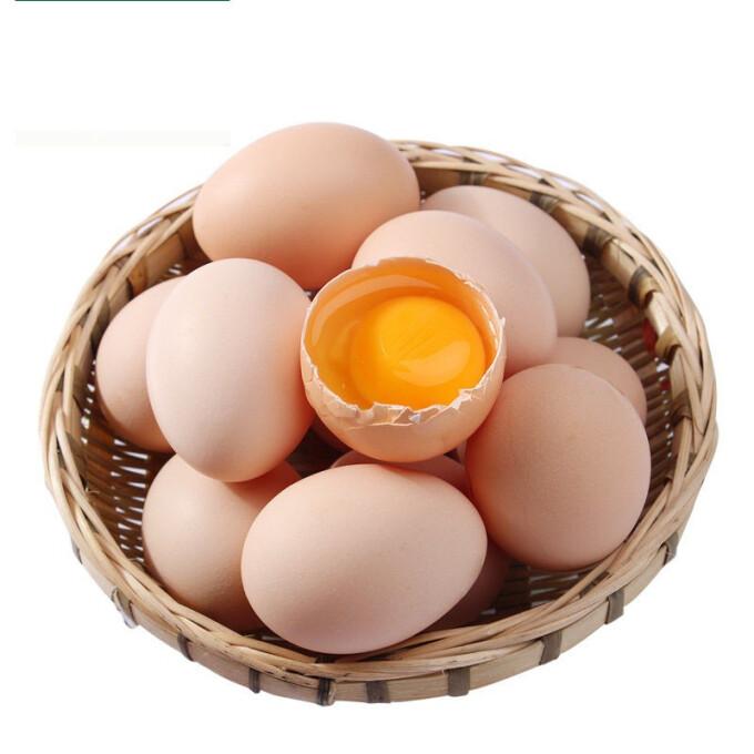 京东PLUS会员 :  苹果红了 农家散养土鸡蛋 10枚 *4件