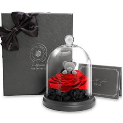 RoseBox 玫瑰盒子 玻璃罩礼盒玫瑰花熊 红色