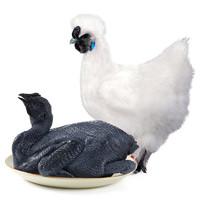 WENS 温氏 乌骨鸡 1kg