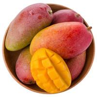 海南树上熟贵妃芒果 净重2.5kg装 单果100g以上