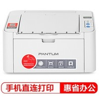 PANTUM 奔图 P2206NW 黑白激光打印机