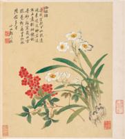 雅昌 邹一桂《天竺水仙花图》42×47cm装饰画 宣纸