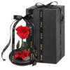 ZHIAI 指爱 永生花礼盒装 长枝独舞玫瑰