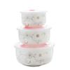 瓷魂 花语-冬樱系列 陶瓷碗 3只装