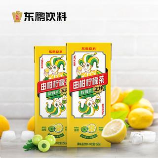 东鹏饮料 由柑柠檬茶250ml*6盒王炸组合 鲜榨柠檬+余甘子杨紫代言