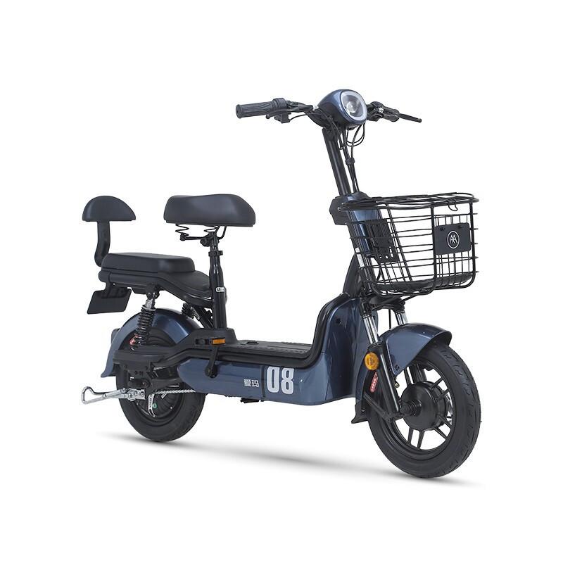 AIMA 爱玛  新国标电动车 TDT1074Z 48V12AH锂电池 深蓝