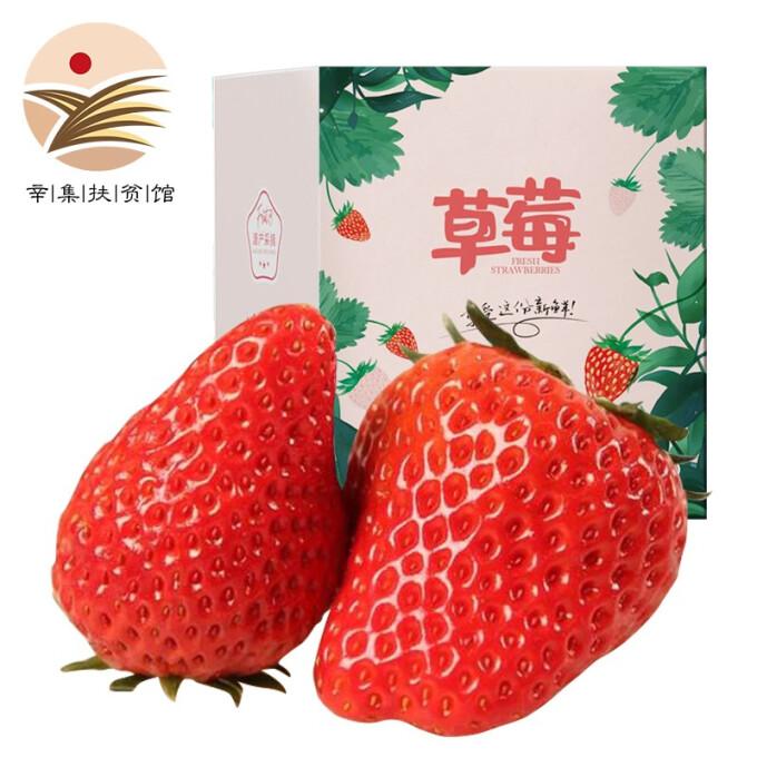 好货福利 : 鑫民窑 红颜奶油草莓99草莓 3盒装 净重2.4斤