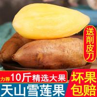 云南天山雪蓮果現挖紅心特級新鮮水果當季包郵5凈重10斤