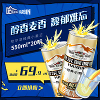 哈爾濱啤酒經典小麥王550ml*20聽整箱易拉罐裝促銷裝 官方旗艦店