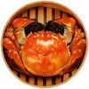 御鲜之王 大闸蟹鲜活现货生鲜螃蟹礼盒 公蟹3.0-3.3两母蟹2.0-2.3两 4对8只