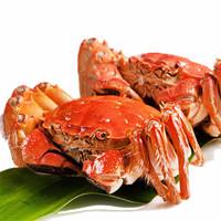 御鮮之王 大閘蟹鮮活現貨生鮮螃蟹禮盒 海鮮水產 全公蟹3.4-3.7兩/只  3只