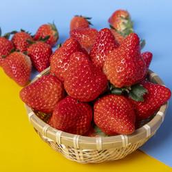玖玖农场 丹东99草莓  中果30-40g  2斤