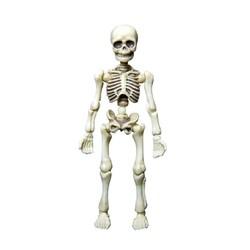 童德 玩物尚志 骷髅人模型 骨头先生