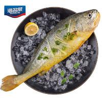 京东PLUS会员、限地区:海名威 国产冷冻黄花鱼(大黄鱼) 600g *5件
