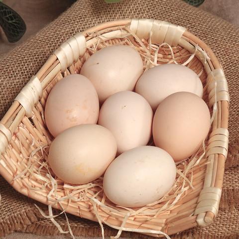 16枚寿之本土鸡蛋农家散养新鲜鸡蛋柴鸡蛋笨鸡蛋好吃的鸡蛋