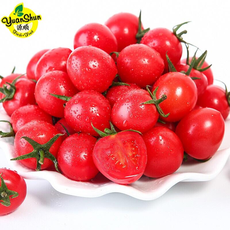 yuanShun Fresh Fruit 源顺 广西圣女果 五斤装