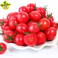 京东PLUS会员: yuanShun Fresh Fruit 源顺 广西圣女果 五斤装
