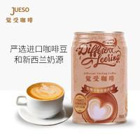 Different Feeling  觉受咖啡  咖啡饮料 10罐*280ml