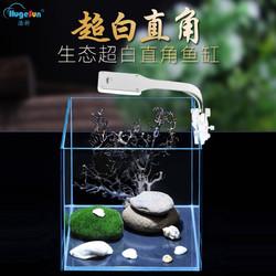 浩新(Hugesun )超白玻璃鱼缸 裸缸20*20*20cm