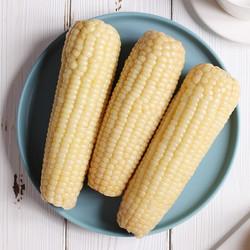 蔬农联 糯玉米棒 新鲜黏玉米穗  真空装加热即食 高档食材 单果180-230g