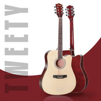 TWEETY 萃迪 民謠吉他 適合初學者樂器新手