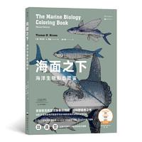 海面之下:海洋生物形態圖鑒(一本可以涂色的海洋科普書)