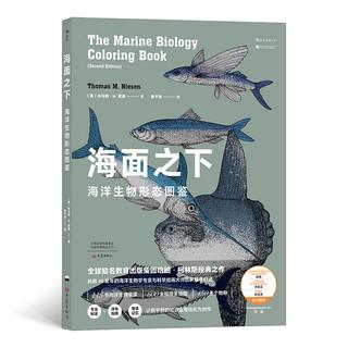 《海面之下:海洋生物形态图鉴》