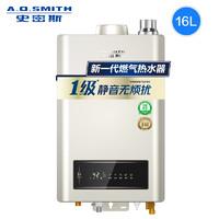 A.O.SMITH 史密斯 JSQ31-TEW 燃气热水器 13L