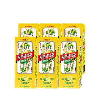 DONGPENG 东鹏 由柑柠檬茶  250ML*6盒