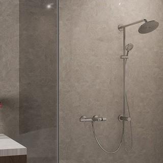Hansgrohe 汉斯格雅 飞雨系列 26168007+15348000 沐浴花洒套装