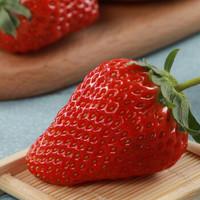 京东PLUS会员:鲜午月  丹东99草莓 净含量1.4kg
