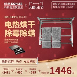 Kohler科勒豪华电热毛巾架 智能家用卫生间浴室烘干置物架45130T